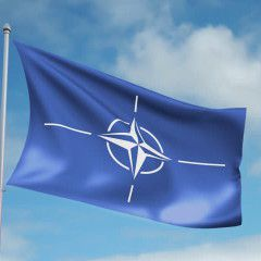 Rada head invites NATO Parliamentary Assembly session to Ukraine