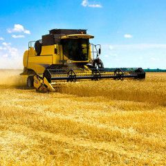 Ukraine`s agriculture ministry set to boost state support of agri-businesses