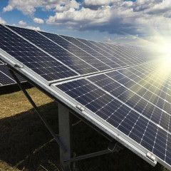 Danish company seeking to invest in construction of solar power plants park in Chornobyl exclusion zone
