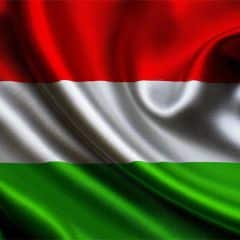 Ukraine expects to get EUR 50 mln loan from Hungary to equip border